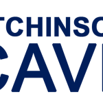 Logo ICAVE2017